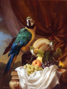 Macaw  Dmitry Sevryukov