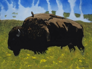 Bullrider (Yellowstone Bison) by Rick Wheeler