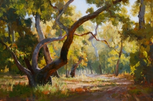 Sycamore Grove by Jim Wodark