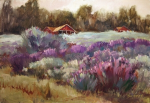 Lavender Farm  Jan Bushart